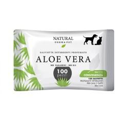 Derbe Salvietta Pack 100 Aloe