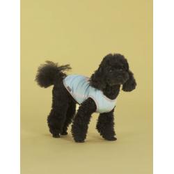 United Pets T-DOG - T-Shirt Azzurro