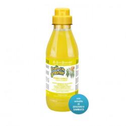 Shampoo Zenzero E Sambuco - 500 ml