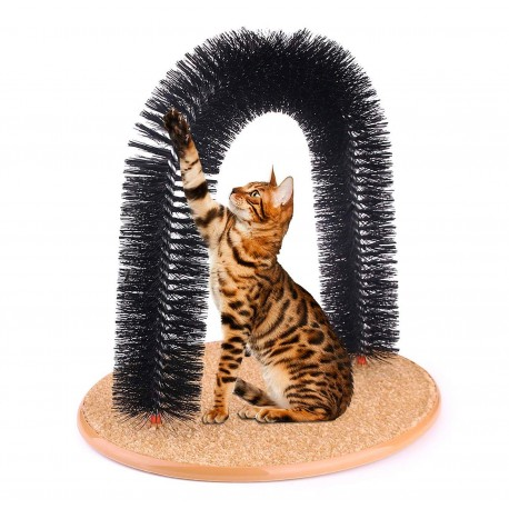 Gatto gioca con Play Time Cat Arch