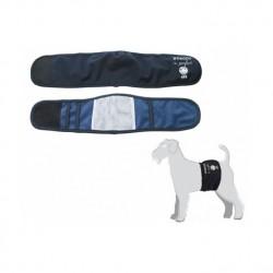 Fascia per cani incontinenti Blu