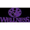 Wellness CORE Sterilised Salmone