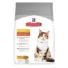 Hill's Cat Urinary Healty Hairball Control - Pollo
