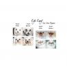Eye Envy Gatto Starter 3 Pezzisoluzione/polvere/applicatore