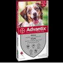 Advantix Spot On Cani 10-25Kg - 4 Fialette