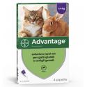 Advantage 80 Spot On per Gatti e Conigli di Peso superiore a 4Kg