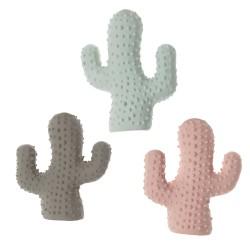 Imac Cactus in Lattice