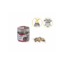 Camon Acciughe Essiccate Gluten Free 30g