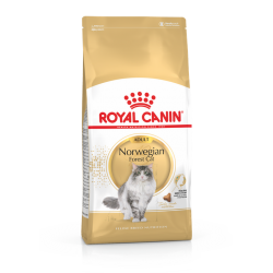 Royal Canin Cat Adult Norwegian Forest