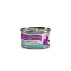 Equilibria Funz. Weight  85 G