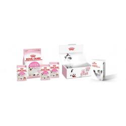 Royal Canin Cat Kitten Box